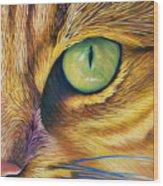 El Gato Wood Print by Brian  Commerford