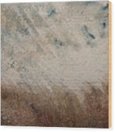 El Genio Curioso 10 Wood Print