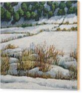 El Llano Wood Print