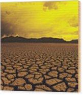 El Mirage Desert Wood Print