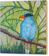 El Pajaro Del Agua Azul  Wood Print