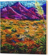 El Paso Wood Print