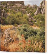 El Torcal Rock Formations Wood Print