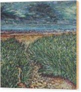 El Viento Del Mar Wood Print
