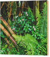 El Yunque National Forest Ferns Impatiens Bamboo Wood Print