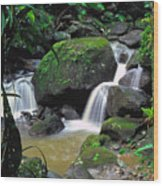 El Yunque National Forest Waterfall Wood Print by Thomas R Fletcher
