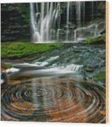 Elakala Fall #1 D30010326 Wood Print
