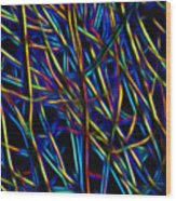 Electric Forest Wood Print