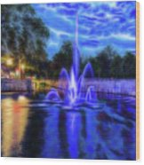 Electric Fountain  Wood Print