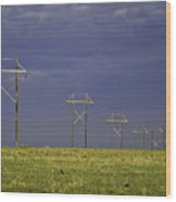 Electric Pasture Wood Print by Melany Sarafis
