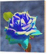Electric Rose Wood Print