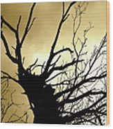 Electric Tree Black And Gold Wood Print