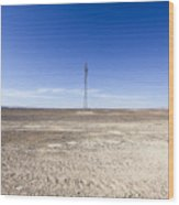 Electricity Pylon In Desert Wood Print