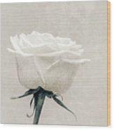 Elegance In White Wood Print by Wim Lanclus