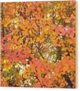 Elegant  Autumn Wood Print