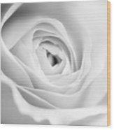 Elegant Rose Rendered In Black And White Square Wood Print