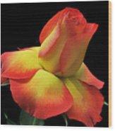 Elegant Rose. Wood Print