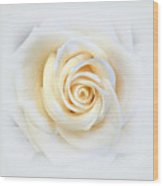 Elegant Softness Wood Print