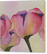 Elegant Tulips  Wood Print