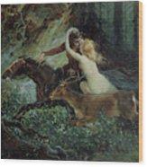 Elegy Of Bohemia Wood Print