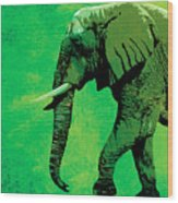 Elephant Animal Decorative Green Wall Poster 4 Wood Print