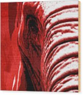 Elephant Animal Decorative Red Wall Poster 14 - By  Diana Van Wood Print