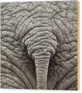 Elephant But Wood Print by images by Luis Otavio Machado
