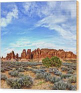 Elephant Butte Wood Print by Chad Dutson
