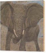 Elephant Charging Wood Print