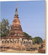 Elephant Chedi Historical Place Wood Print