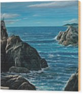 Elephant Cove Wood Print