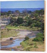 Elephant Crossing In Tarangire Wood Print