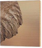 Elephant Ear Close-up Wood Print