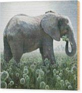 Elephant Eating Onions Wood Print