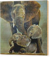 Elephant Familly Wood Print