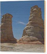 Elephant Feet Arizona Wood Print
