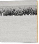 Elephant Herd East Africa Wood Print
