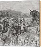 Elephant Hunters In The 19th Century Wood Print