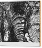 Elephant In Crosshatch Wood Print