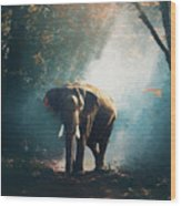Elephant In The Mist - Painting Wood Print
