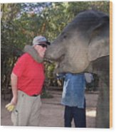 Elephant Kissing Man Holding Bananas Wood Print