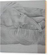 Elephant Love Wood Print