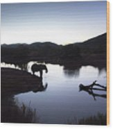 Elephant Silhouette At Sunset Wood Print
