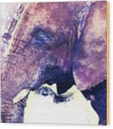 Elephant Watercolor Painting Wood Print