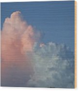 Elephants  Clouds Wood Print