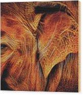 Elephant's Ear Wood Print