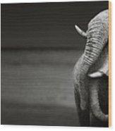 Elephants Interacting Wood Print