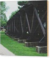 Elevated Railroad Wood Print