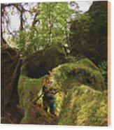 Elf Cave Wood Print