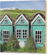 Elf Houses Wood Print